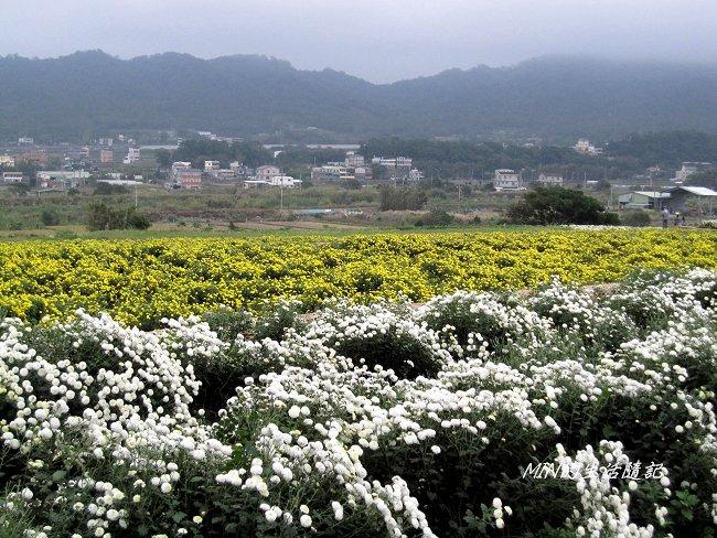 99年東勢林場 (75).JPG