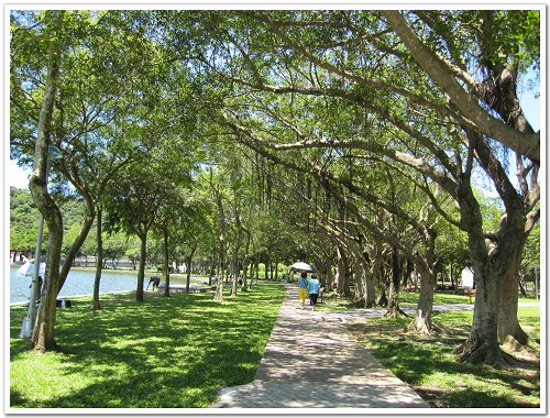 大湖公園 (4).jpg
