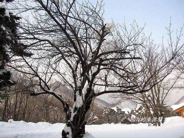 雪嶽山國家公園 (13).jpg