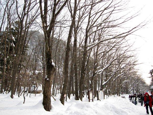 雪嶽山國家公園 (17).jpg