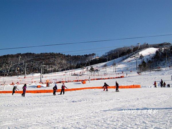 大關嶺餵羊+滑雪 (13).jpg