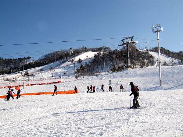 大關嶺餵羊+滑雪 (14).jpg