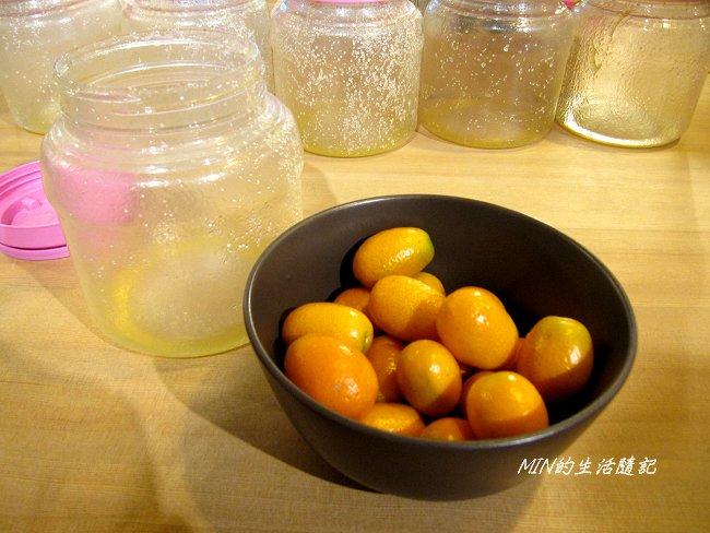 橘之鄉蜜餞形象館 (20).JPG