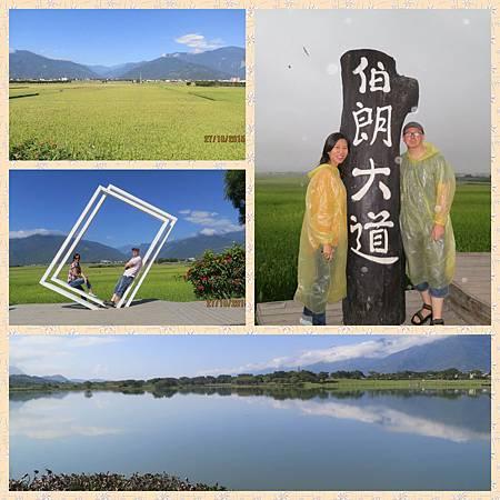 IMG_0336_Fotor_Collage.jpg
