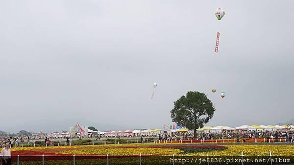 1111新社花海 102.JPG