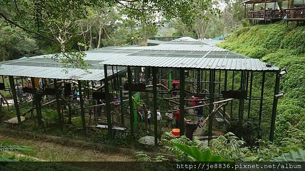 森林鳥花園 017.JPG