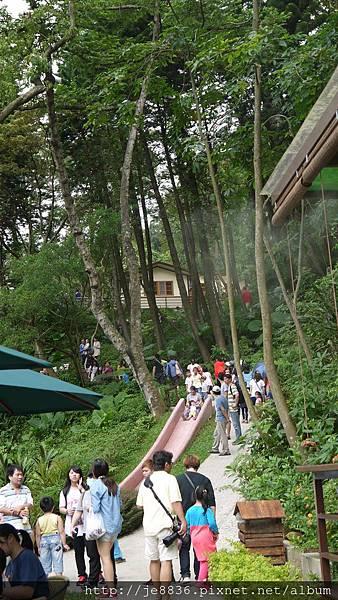 森林鳥花園 058.JPG
