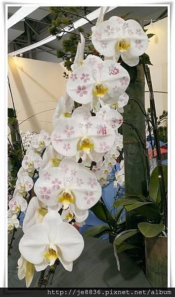 1205花卉裝置設計展 jpg (58).JPG