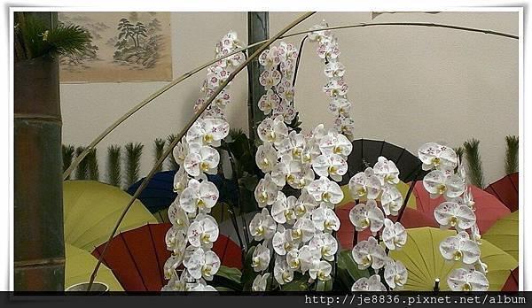 1205花卉裝置設計展 jpg (60).JPG