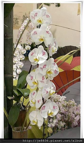 1205花卉裝置設計展 jpg (64).JPG