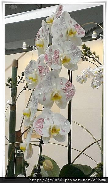 1205花卉裝置設計展 jpg (65).JPG