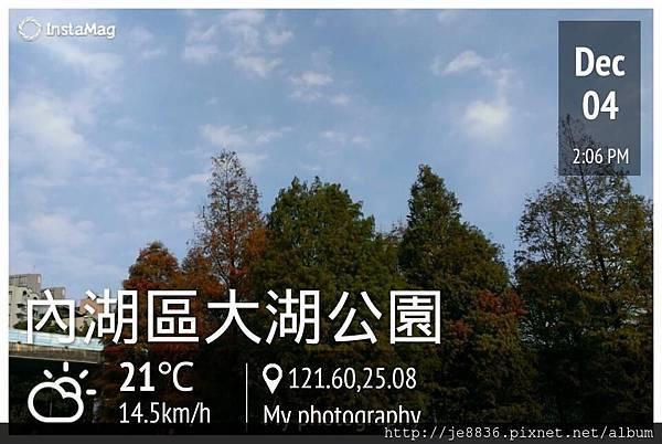 1204大湖公園1.jpg