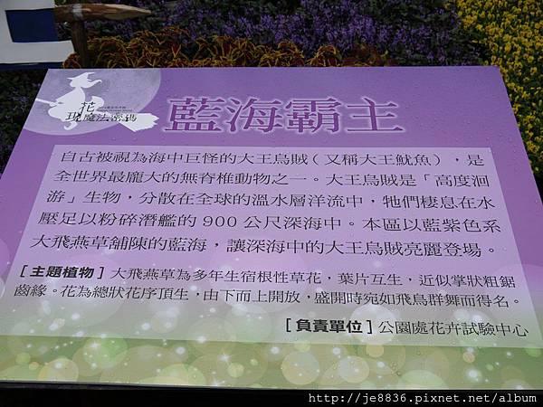 1212台北花卉展 065