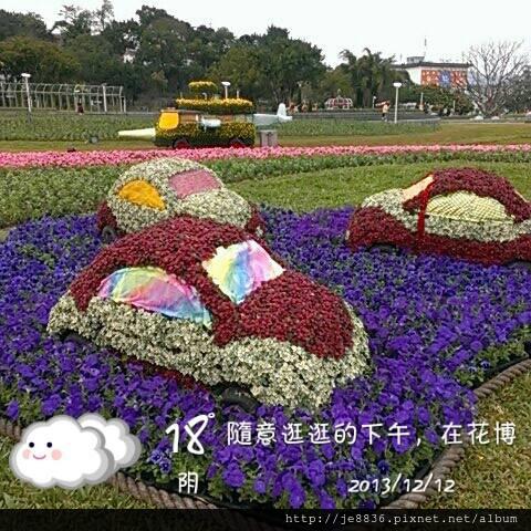1212花卉展1