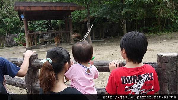 1102動物園 003.JPG