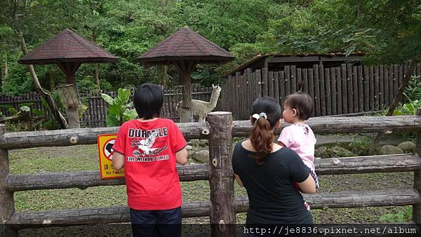 1102動物園 004.JPG