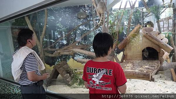 1102動物園 005.JPG