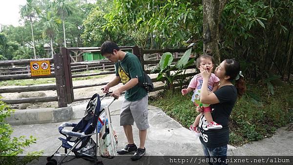 1102動物園 007.JPG