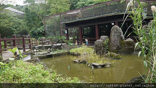 1102動物園 015.JPG