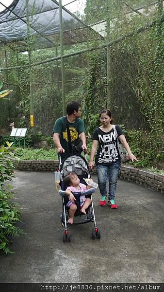 1102動物園 017.JPG