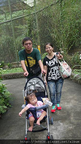 1102動物園 018.JPG