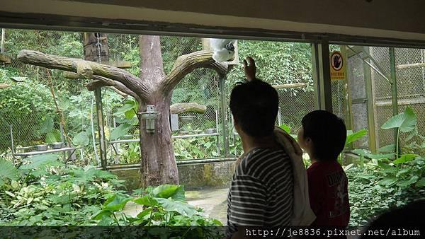 1102動物園 021.JPG