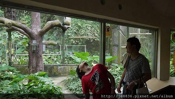 1102動物園 022.JPG