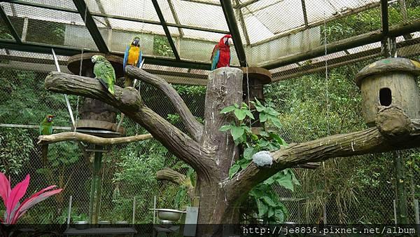 1102動物園 024.JPG