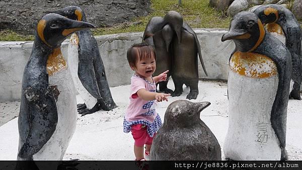 1102動物園 031.JPG