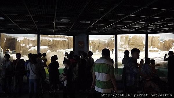 1102動物園 032.JPG