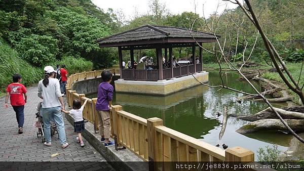 1102動物園 034.JPG