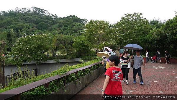 1102動物園 040.JPG