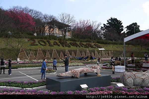 0129陽明山花季 (11).JPG