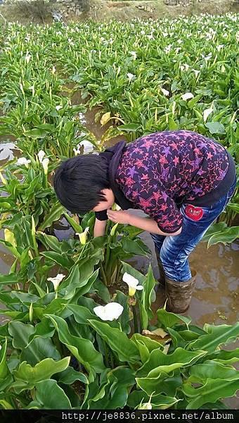 0223竹仔湖 021.jpg
