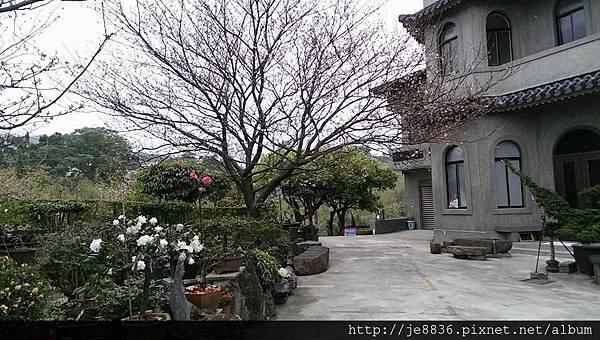 0310東方寺 (1).jpg