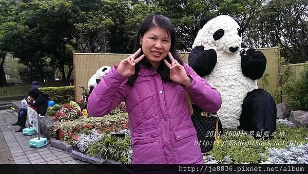 0309世界熊貓之旅 (54).jpg
