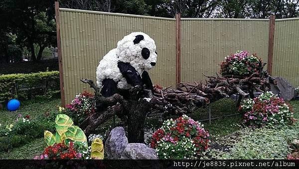 0309世界熊貓之旅 (55).jpg
