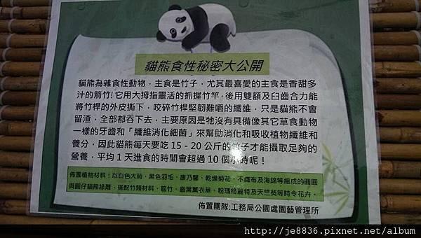 0309世界熊貓之旅 (56).jpg