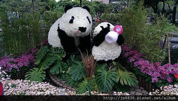 0309世界熊貓之旅 (57).jpg