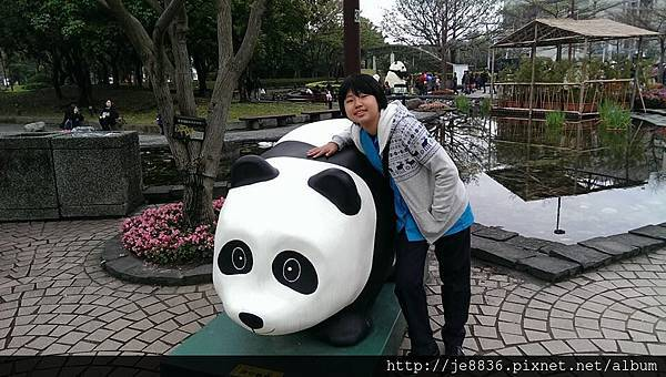0309世界熊貓之旅 (59).jpg