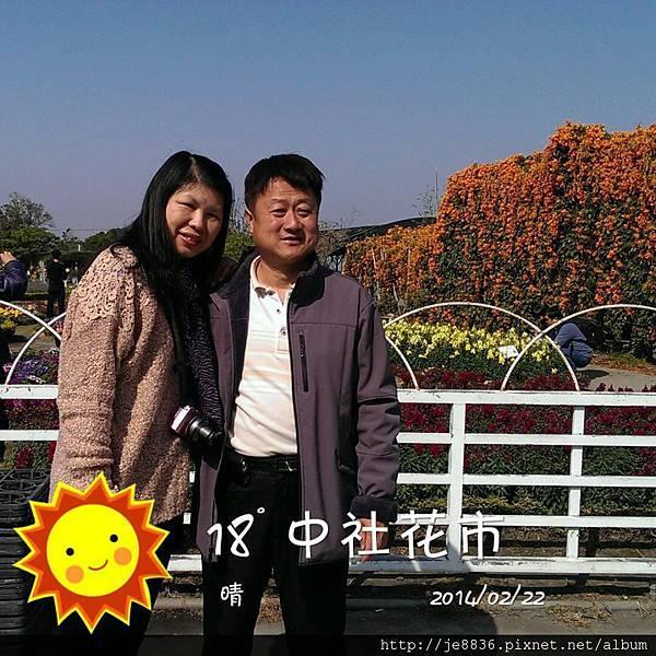 0222中社花市18.jpg