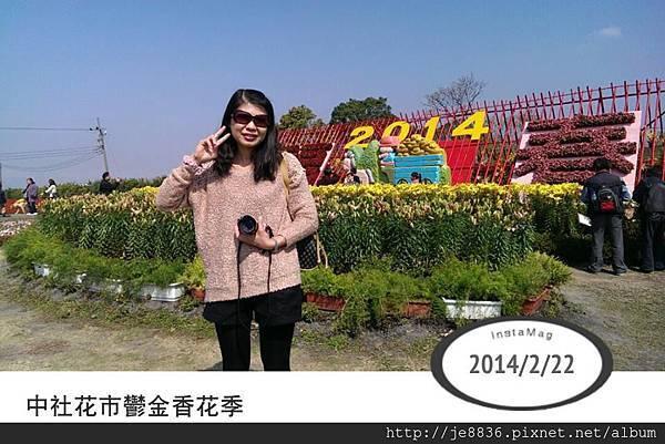 0222中社花市1.jpg