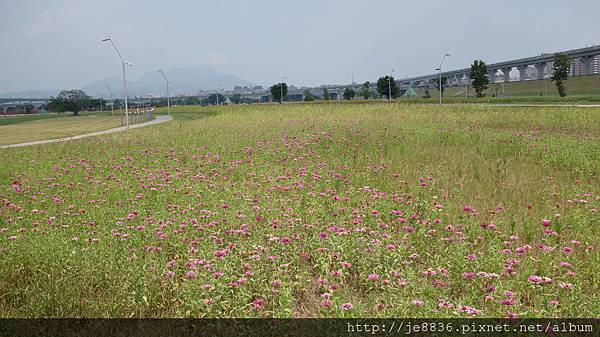 0903幸福水漾公園 021.JPG