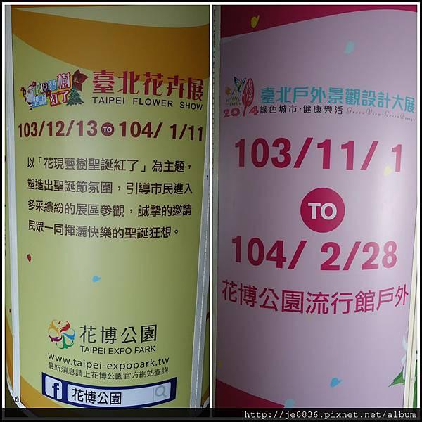 1105愛與芬芳  (5).JPG
