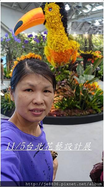 1105愛與芬芳  (53).JPG
