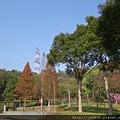 0124長庚養生村花海 038.JPG