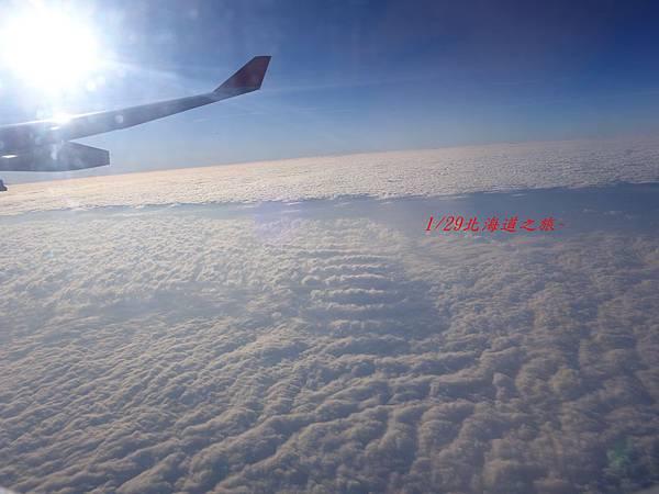 0129桃園機場  (9).JPG