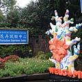 2015茶花展 001.JPG