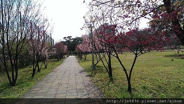 0216運動公園 (6).jpg