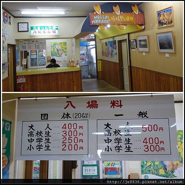 0130北見狐狸村 (9).JPG